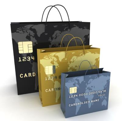 Image for Introduction to Consumer Credit